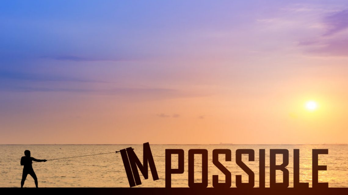 IM POSSIBLE